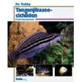 Tanganjikasee-cichliden (Ihr-hobby) / Frank Schneidewind